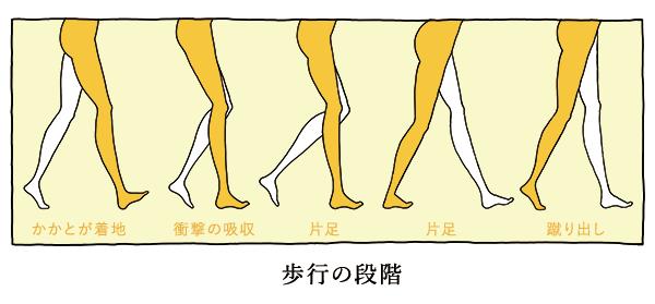 歩行の段階