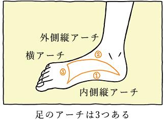 足のアーチは3つある