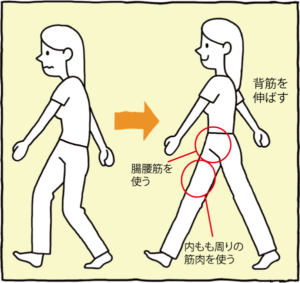 腸腰筋を使う、背筋を伸ばす、内もも周りの筋肉を使う