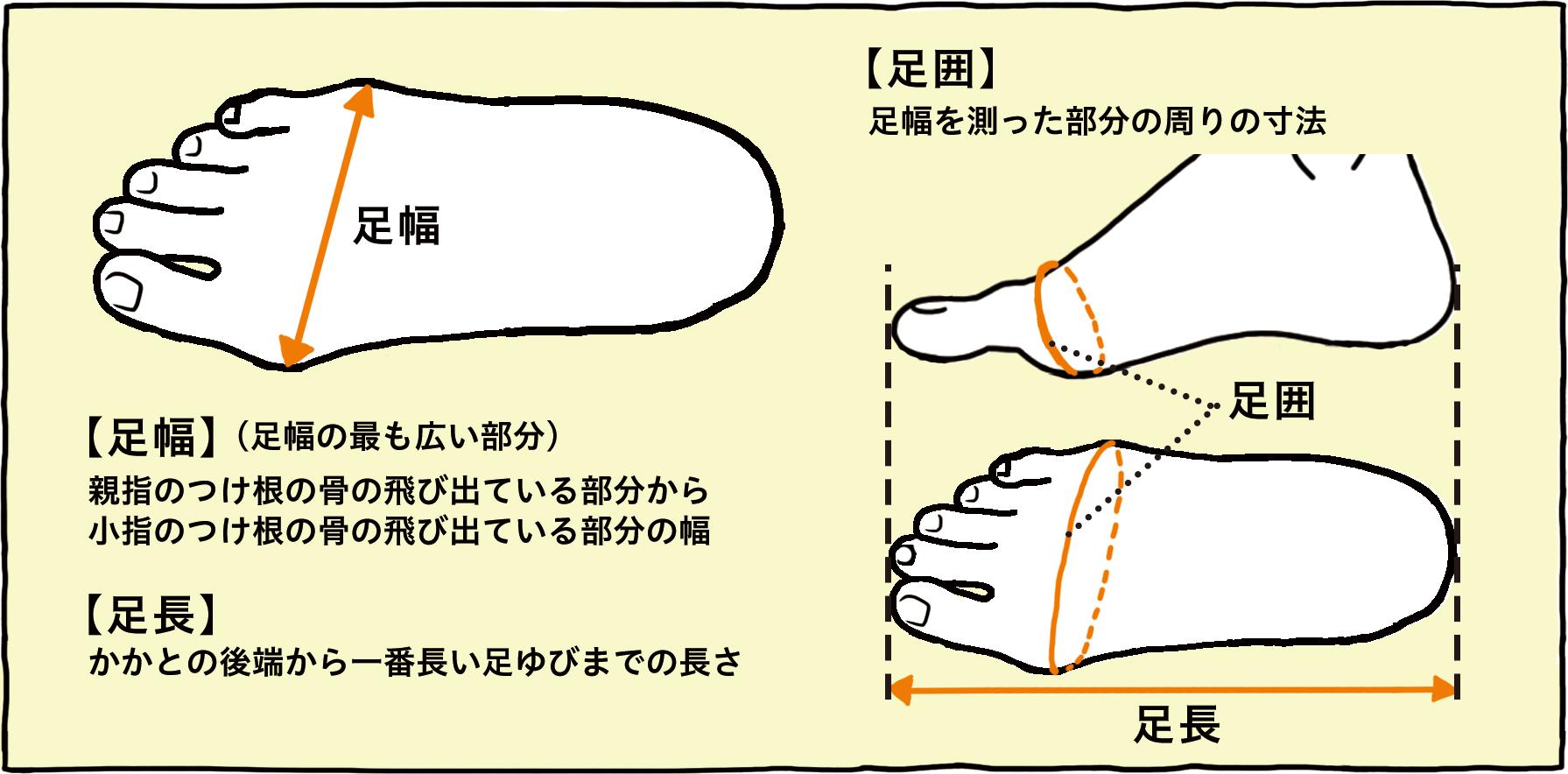足幅・足長・足囲の測り方